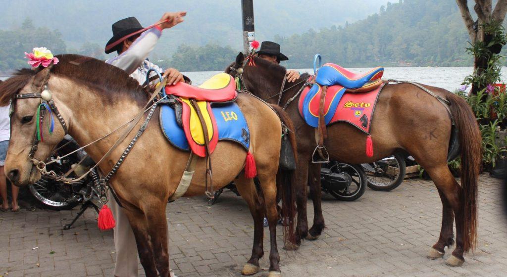 Berkuda Menyisiri Telaga Sarangan